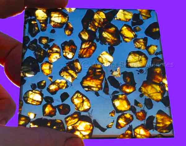 Pallasite Pallasite Meteorite Pallasites Imilac Esquel