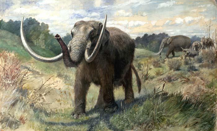 Mastodon(マストドン)に乗り遅れた人のための …